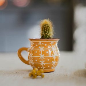 Duo mini-vases Stela jaunes